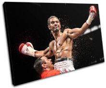 Boxing David Haye Sports - 13-1920(00B)-SG32-LO
